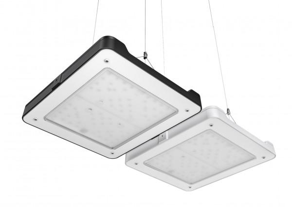 Philips CoralCare 2020 LED